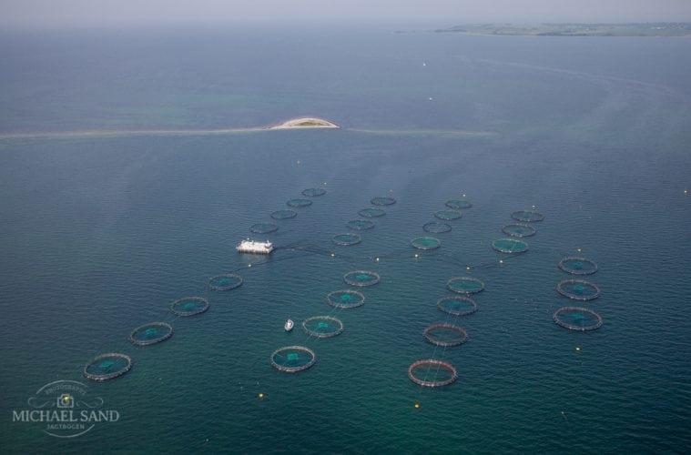Havbrug vil øge forurening kraftigt advarer DN
