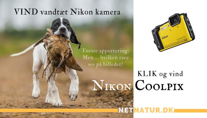 Vind et Nikon kamera